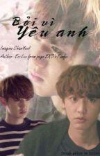[Fan Imagine] [EXO] Bởi Vì Yêu Anh by luongtuean97