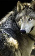 Lobos... Embry y Ariadna by 987456321n