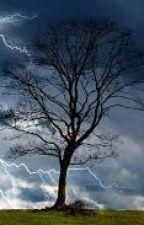 Sky Storm by LeylaBuntspecht
