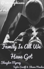 Family is All We Have Got || Shaylor Mpreg AU [BoyxBoy] by smokeykisses