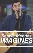Shawn Mendes Imagines by mendessmuffinn