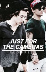Just for the Cameras (Larry fanfiction  Harry x reader) by flourish
