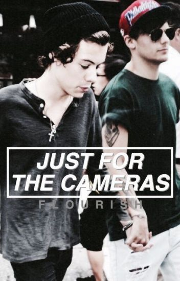 Just for the Cameras (Larry fanfiction, Harry x reader)