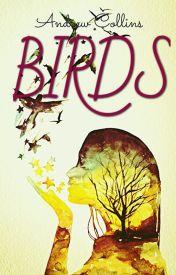 Birds by Drew_Collins