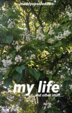 My life and stuff.. by flashydashy_54