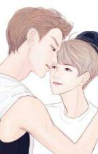 [longfic] [Chanbaek]-[PG] Tôi yêu cậu hơn 7 tỉ người! by ThoBch437