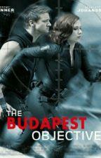 The beginning : Budapest by HopefullxBroken