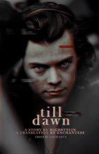 Till Dawn ≫ h.s (Russian Translation) by enchantedi