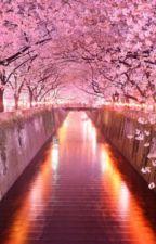 Blossom by liteygirl