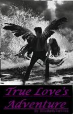 True Love's Adventure (Hush Hush) by Winchester137