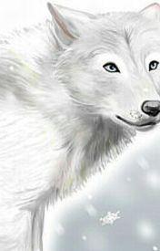 Snowys Forms by SnowyTheWolf_