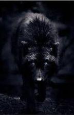 Złotooki Czarny Wilk (korekta) by FairyTail6669