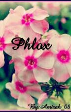 Phlox by Amirah_08