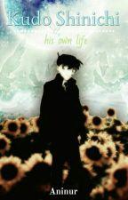 Kudo Shinichi, his own life by Aninur