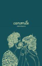 camomile by BabenkoYeva