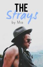 The Strays // h.s. by BritishBums