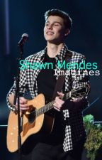 Shawn Mendes Imagines (UPDATES ARE SLOW) by shawnthegreenbean