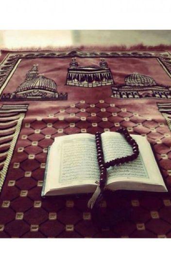 Histoires Islamique