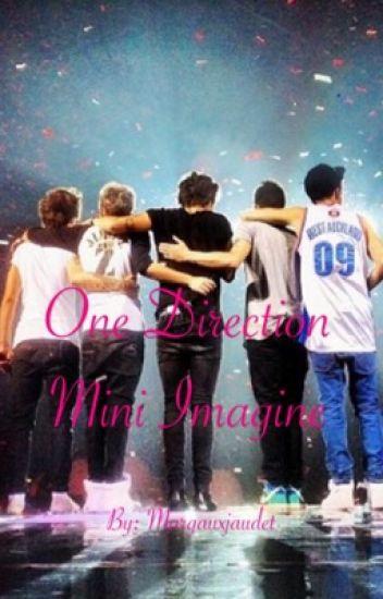 One Direction Mini Imagine