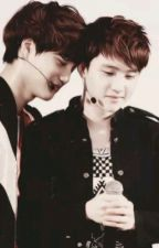 Kaisoo (Lot's of love) by amalia224