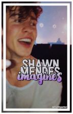 shawn mendes imagines by holyhummel