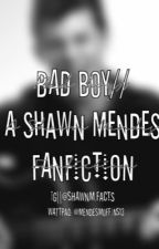 Bad Boy// sm by muffintopmendes