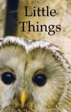 Little Things by PandaGirlyGirl