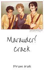 Marauder! Crack by Lilith_Harrison
