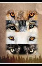 La louve blanche au yeux vert ( Teen Wolf ) by LaSemur