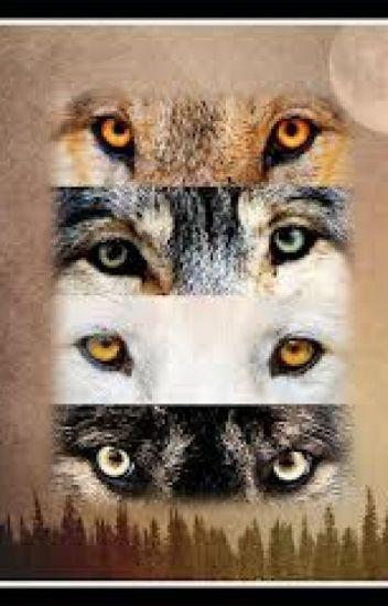 La louve blanche au yeux vert ( Teen Wolf )