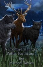A Promise: a Harry Potter Fanfiction. by McbeastHP