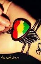 chronique coup de cœur en Kurdistan by lakurde_