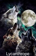 Lone wolves  by undiscovered4real
