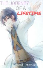 The Journey of A Lifetime (Gray x Reader) by wolf_musix