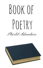 Book of Poems by LilyWrites26