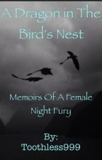A Dragon in the Bird's Nest: Memoirs of a Female Night Fury by Toothless999