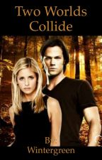 Buffy and Sam (Two worlds collide) In editing. by Wintergreen