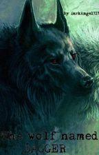 The wolf named Dagger.(boyxboy) by DarkAngel717
