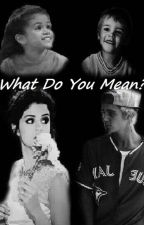 What Do You Mean? by lucybieber94