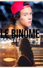 Le Binôme // h.s.// TERMINÉ  by 1D_Mind