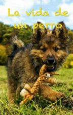 La vida de un perro by Aiamkawaii