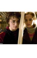 Harry and Hermione- Harmione Stories by smsmcghee