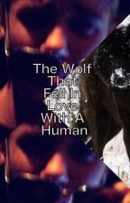 The Wolf That Fell In Love With A Human - R RESTRICTED by BlakeeVerrecas