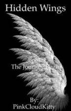 Hidden Wings by piercingstar