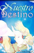 Nuestro Destino|Zelink-Tloz| by Christi-Dragneel