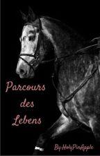 Parcours des Lebens by HolyPinApple