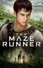 Maze Runner: Amar o Morir by MasielDayana
