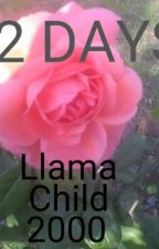 92 Days by LlamaChild2000