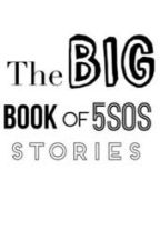 The Big Book Of 5SOS Stories by NiamhDaly100