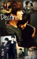 Destino - KyuWook. by Juliana1611